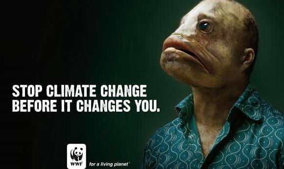 WWF Stop Climate Change Before it Changes You