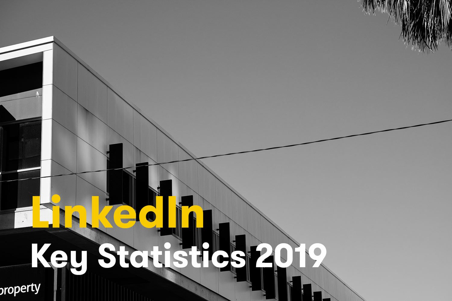 LinkedIn Key Statistics for 2020 [Infographic]