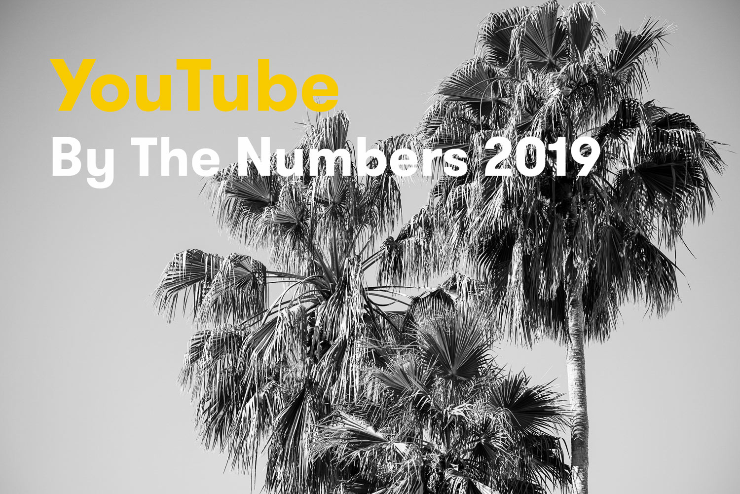 YouTube By The Numbers For 2019 [Infographic]